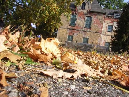 Das Bild wurde im Rahmen der Studienreise aufgenommen und zeigt das Schloss in Steinort / Sztynort