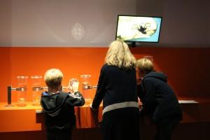 BesucherInnen in der Ausstellung